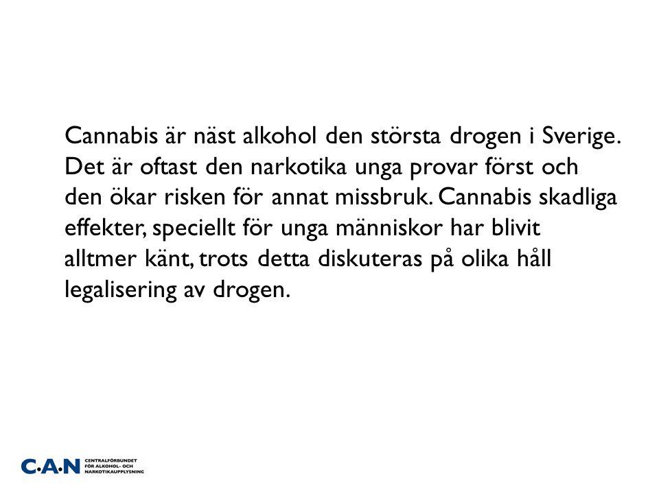 Cannabis är näst alkohol den största drogen i Sverige. Det är oftast den narkotika unga provar först och den ökar risken för annat missbruk. Cannabis