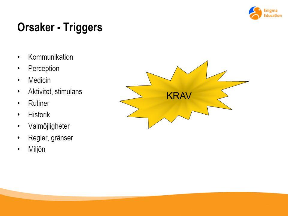 Orsaker - Triggers Kommunikation Perception Medicin Aktivitet, stimulans Rutiner Historik Valmöjligheter Regler, gränser Miljön KRAV