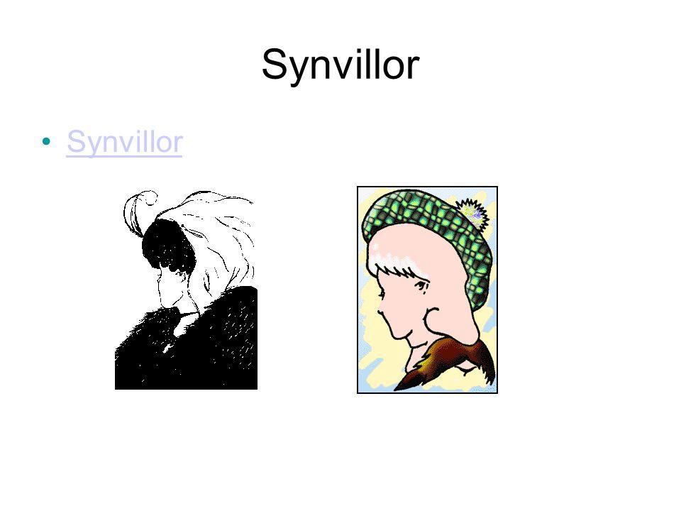Synvillor