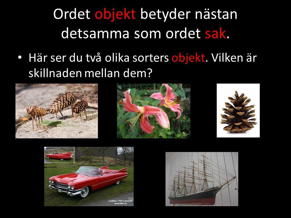 Man kan ta på ett objekt.Ett objekt kan vara gjort både av naturen och av människan.