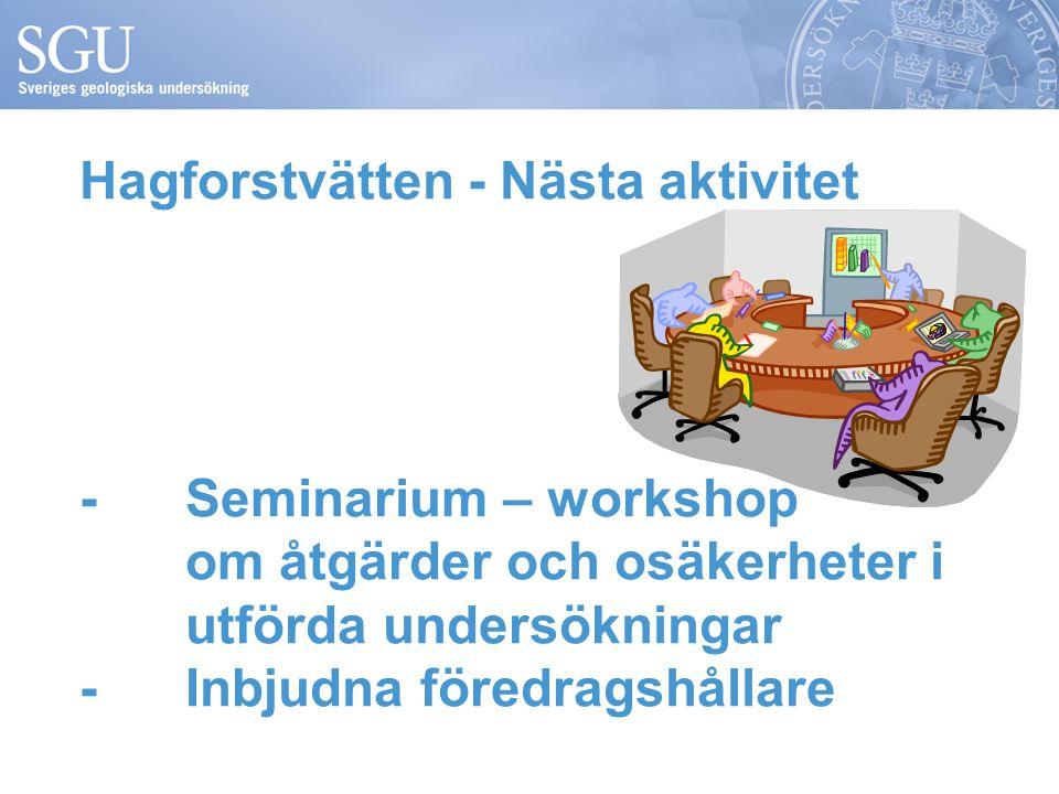Hagforstvätten - Nästa aktivitet - Seminarium – workshop om åtgärder och osäkerheter i utförda undersökningar -Inbjudna föredragshållare
