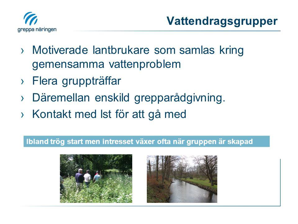 Vattendragsgrupper ›Motiverade lantbrukare som samlas kring gemensamma vattenproblem ›Flera gruppträffar ›Däremellan enskild grepparådgivning. ›Kontak