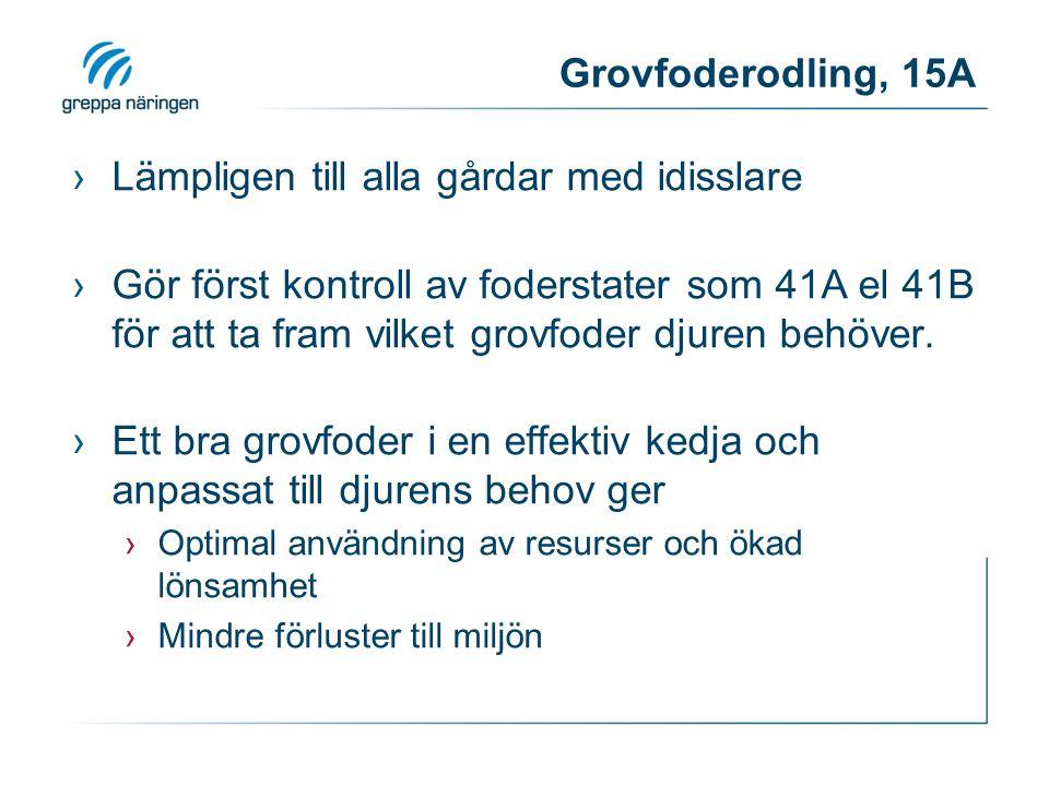 Grovfoderodling, 15A ›Lämpligen till alla gårdar med idisslare ›Gör först kontroll av foderstater som 41A el 41B för att ta fram vilket grovfoder djur
