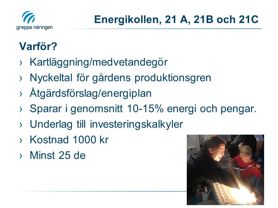 Energikollen, 21 A, 21B och 21C Varför? ›Kartläggning/medvetandegör ›Nyckeltal för gårdens produktionsgren ›Åtgärdsförslag/energiplan ›Sparar i genoms