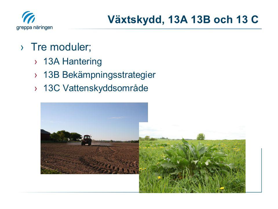 Växtskydd, 13A 13B och 13 C ›Tre moduler; ›13A Hantering ›13B Bekämpningsstrategier ›13C Vattenskyddsområde