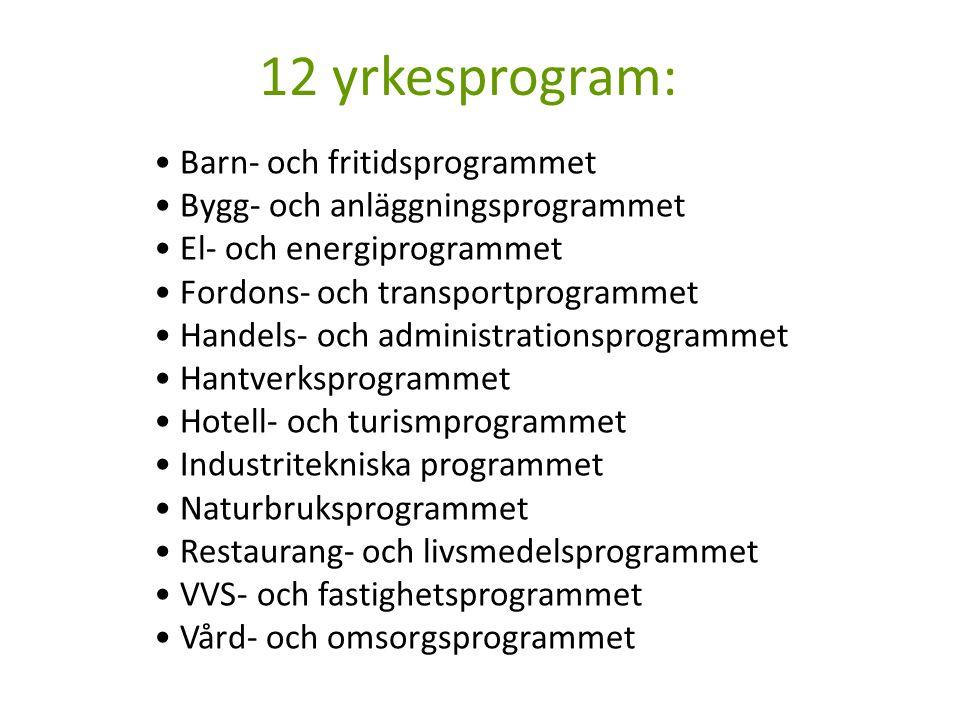 12 yrkesprogram: Barn- och fritidsprogrammet Bygg- och anläggningsprogrammet El- och energiprogrammet Fordons- och transportprogrammet Handels- och ad