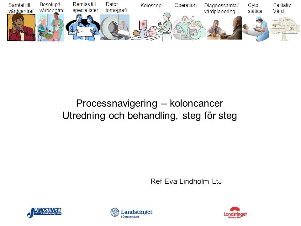 Samtal till vårdcentral Besök på vårdcentral Remiss till specialister Dator- tomografi Koloscopi Operation Diagnossamtal/ vårdplanering Cyto- statica