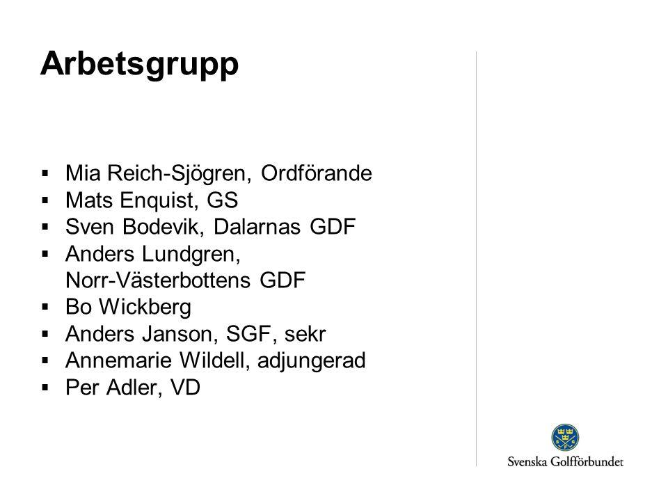 Arbetsgrupp  Mia Reich-Sjögren, Ordförande  Mats Enquist, GS  Sven Bodevik, Dalarnas GDF  Anders Lundgren, Norr-Västerbottens GDF  Bo Wickberg 