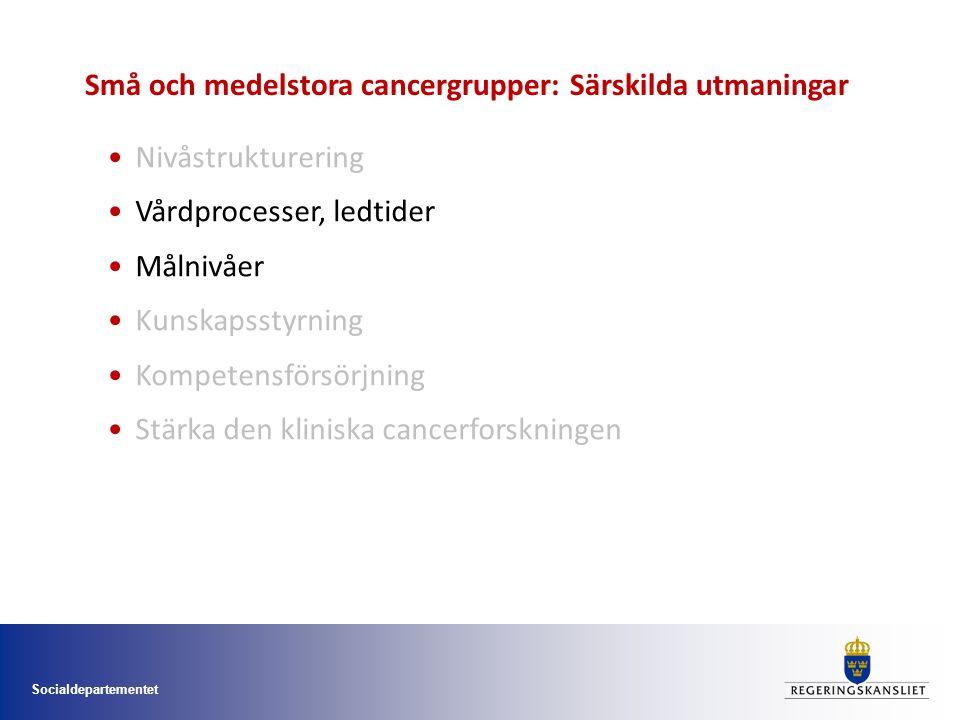 Socialdepartementet Nivåstrukturering Vårdprocesser, ledtider Målnivåer Kunskapsstyrning Kompetensförsörjning Stärka den kliniska cancerforskningen Små och medelstora cancergrupper: Särskilda utmaningar