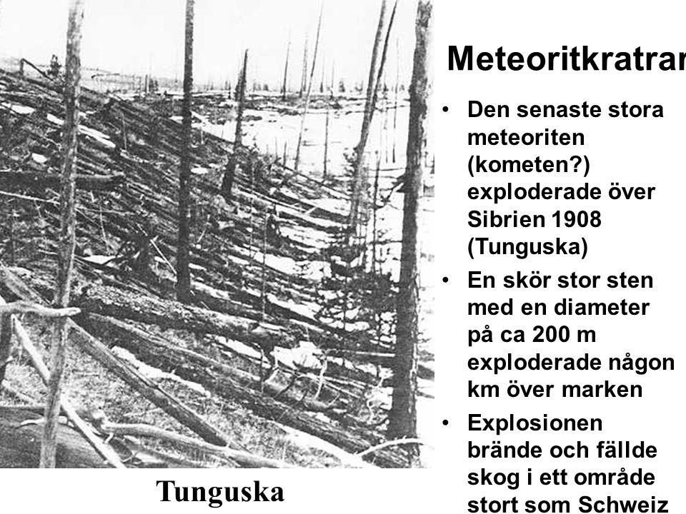 Meteoritkratrar Den senaste stora meteoriten (kometen?) exploderade över Sibrien 1908 (Tunguska) En skör stor sten med en diameter på ca 200 m explode