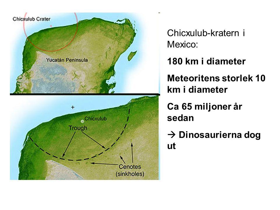 Chicxulub-kratern i Mexico: 180 km i diameter Meteoritens storlek 10 km i diameter Ca 65 miljoner år sedan  Dinosaurierna dog ut
