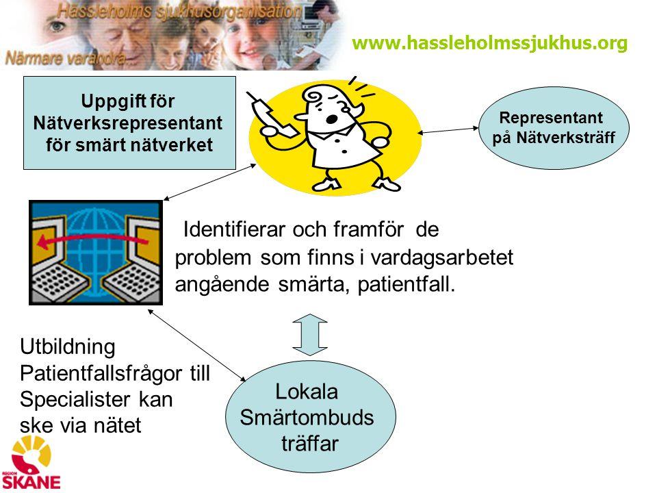 www.hassleholmssjukhus.org Identifierar och framför de problem som finns i vardagsarbetet angående smärta, patientfall.