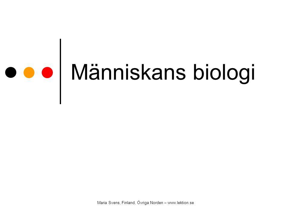 Människans biologi Maria Svens, Finland, Övriga Norden – www.lektion.se