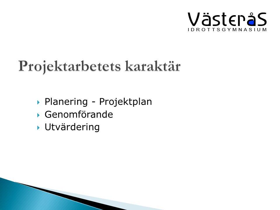  Planering - Projektplan  Genomförande  Utvärdering