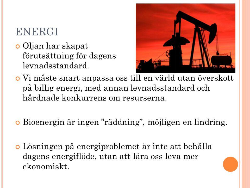ENERGI Vi måste snart anpassa oss till en värld utan överskott på billig energi, med annan levnadsstandard och hårdnade konkurrens om resurserna. Bioe