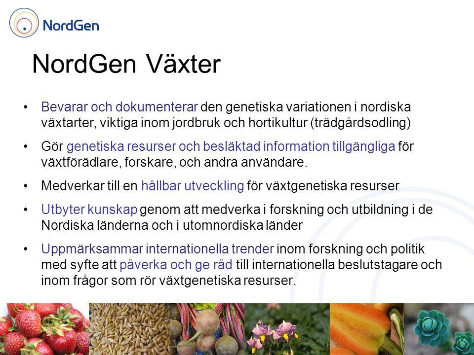 NordGen Växter Bevarar och dokumenterar den genetiska variationen i nordiska växtarter, viktiga inom jordbruk och hortikultur (trädgårdsodling) Gör genetiska resurser och besläktad information tillgängliga för växtförädlare, forskare, och andra användare.