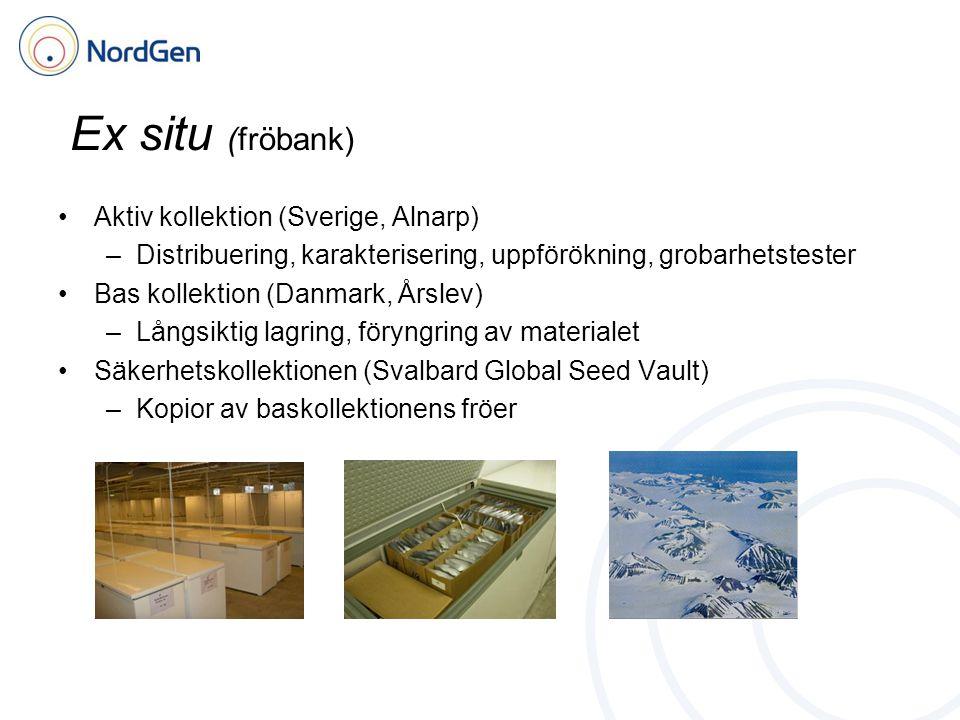 Ex situ (fröbank) Aktiv kollektion (Sverige, Alnarp) –Distribuering, karakterisering, uppförökning, grobarhetstester Bas kollektion (Danmark, Årslev) –Långsiktig lagring, föryngring av materialet Säkerhetskollektionen (Svalbard Global Seed Vault) –Kopior av baskollektionens fröer