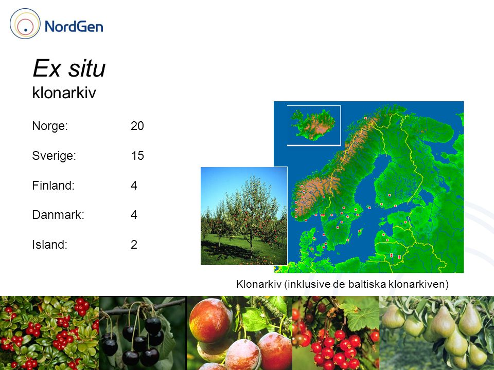 Ex situ klonarkiv Klonarkiv (inklusive de baltiska klonarkiven) Norge:20 Sverige:15 Finland:4 Danmark:4 Island:2