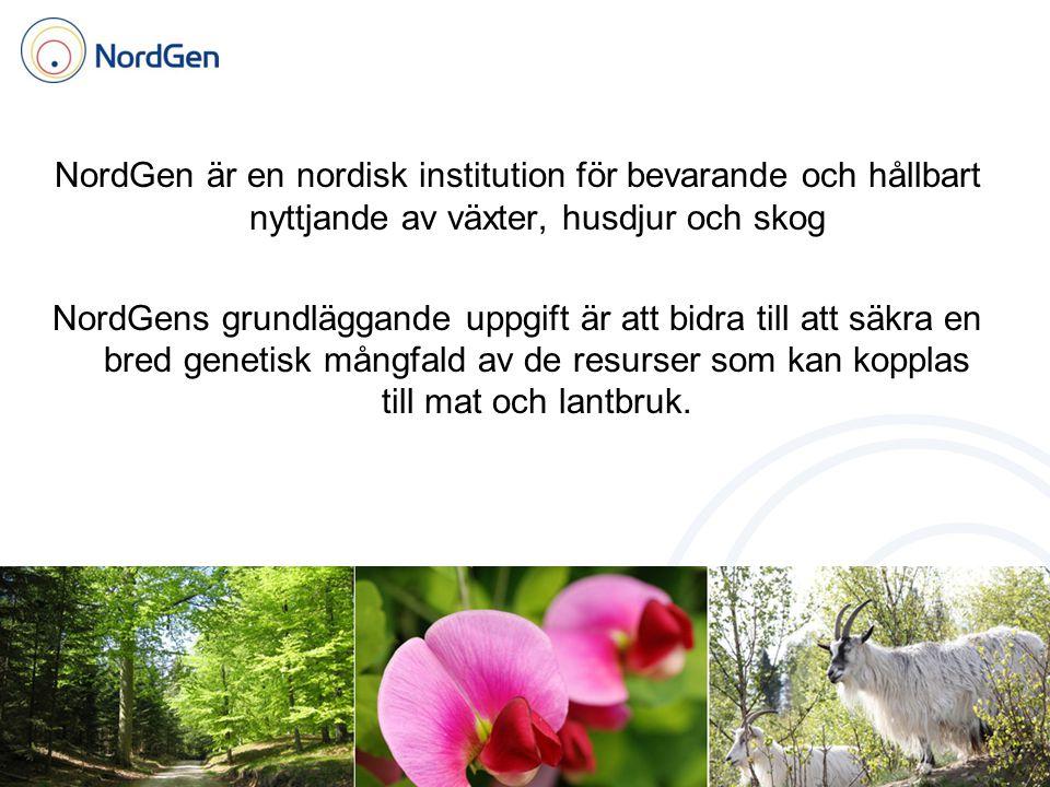 NordGen är en nordisk institution för bevarande och hållbart nyttjande av växter, husdjur och skog NordGens grundläggande uppgift är att bidra till att säkra en bred genetisk mångfald av de resurser som kan kopplas till mat och lantbruk.