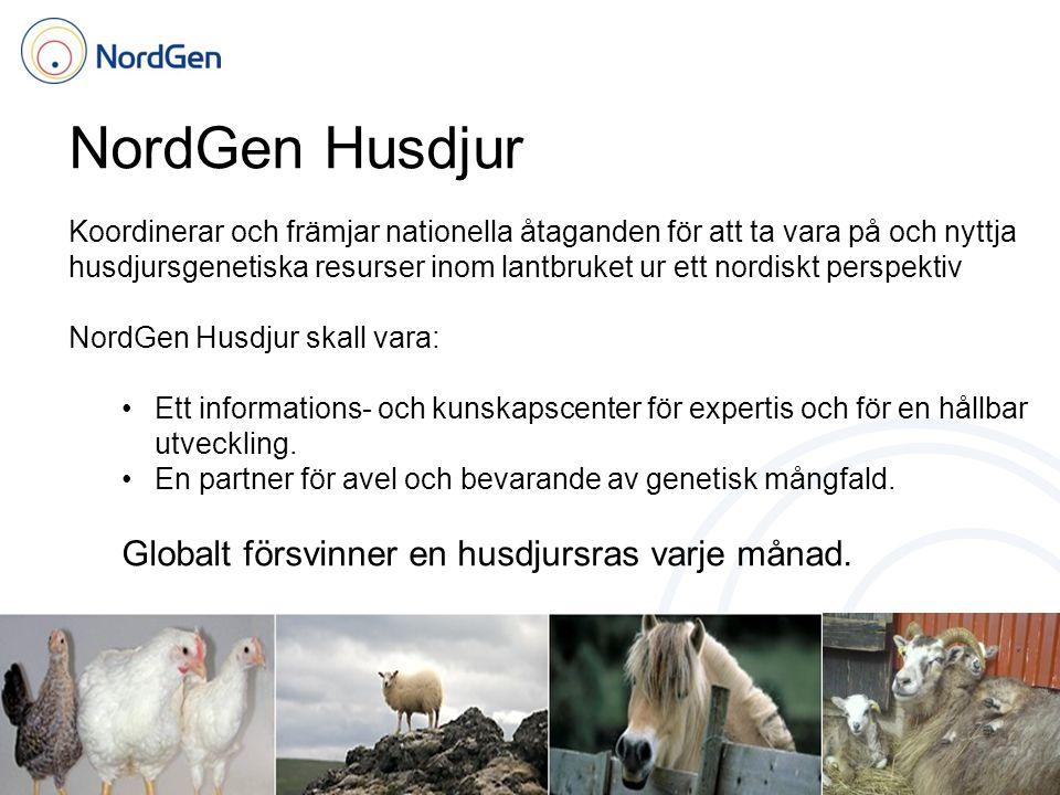 NordGen Husdjur Koordinerar och främjar nationella åtaganden för att ta vara på och nyttja husdjursgenetiska resurser inom lantbruket ur ett nordiskt perspektiv NordGen Husdjur skall vara: Ett informations- och kunskapscenter för expertis och för en hållbar utveckling.