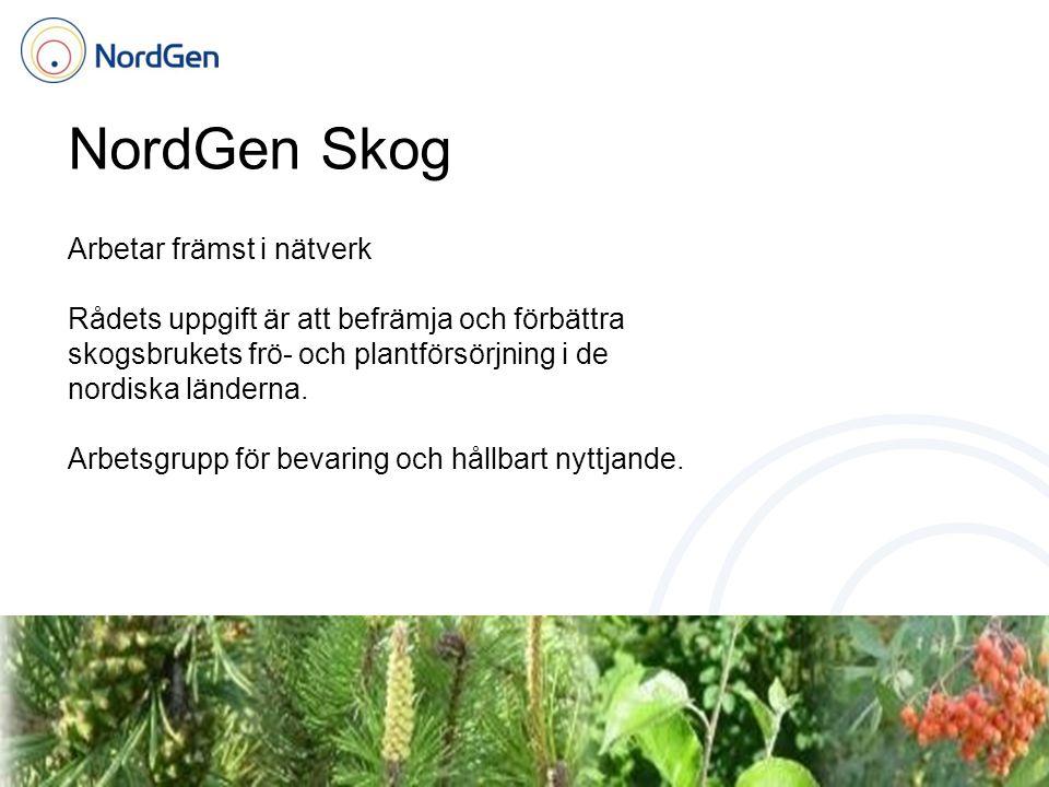 NordGen Skog Arbetar främst i nätverk Rådets uppgift är att befrämja och förbättra skogsbrukets frö- och plantförsörjning i de nordiska länderna. Arbe