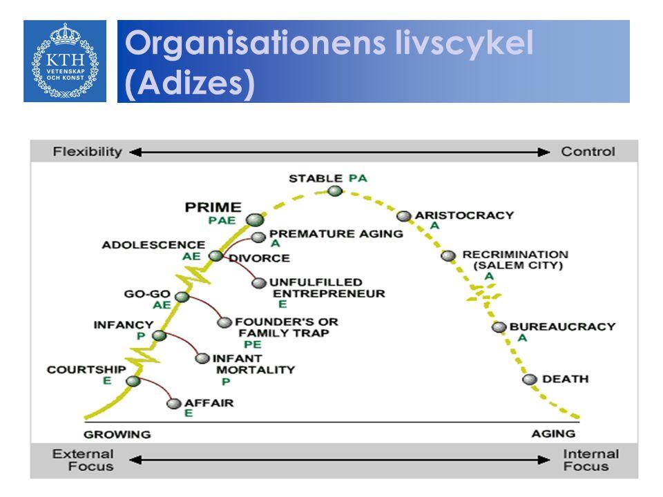 Organisationens livscykel (Adizes)