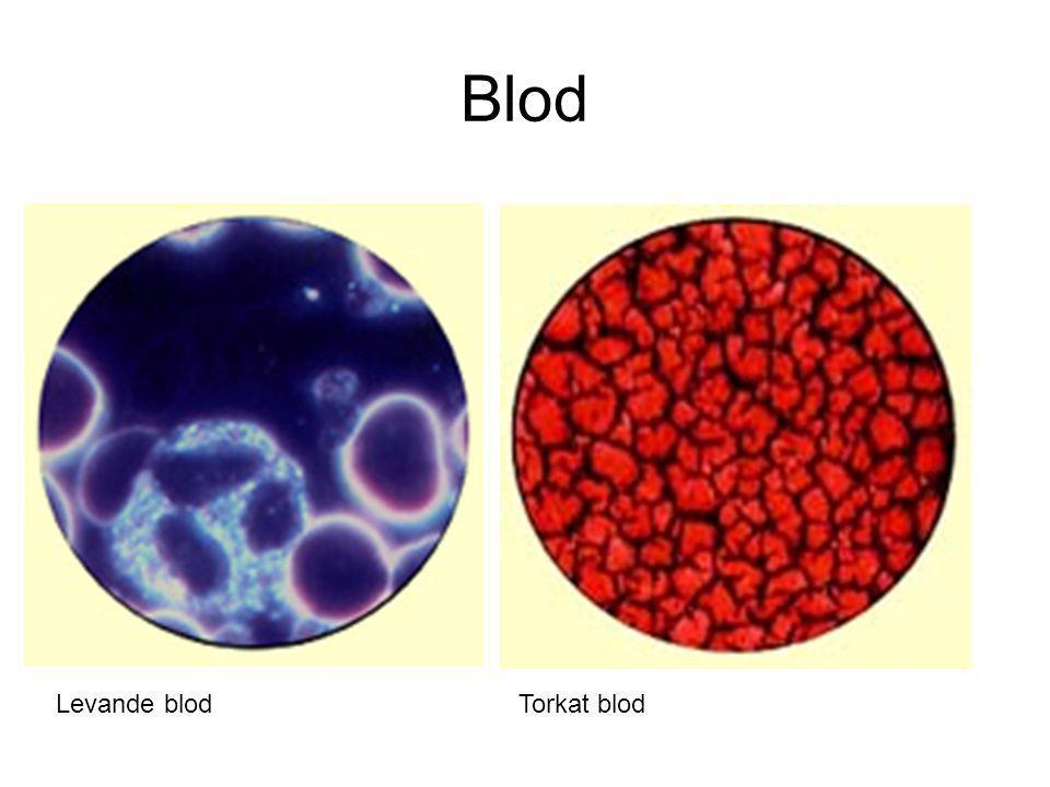 Blod Levande blodTorkat blod