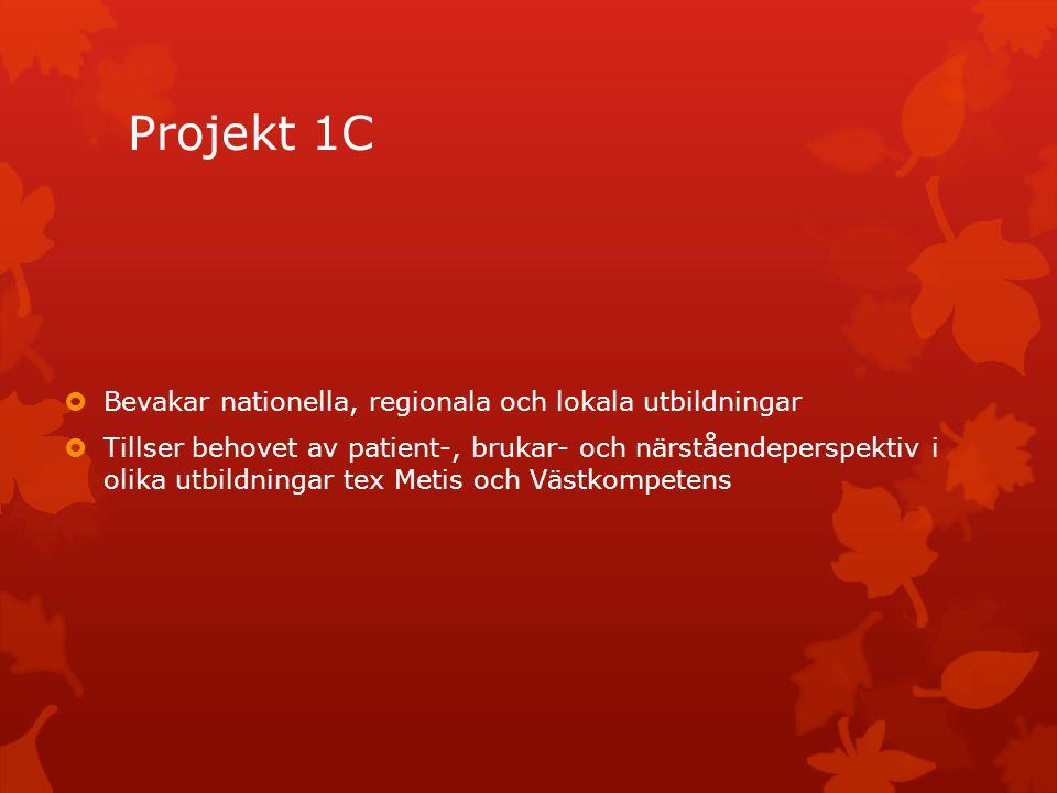 Projekt 1C  Bevakar nationella, regionala och lokala utbildningar  Tillser behovet av patient-, brukar- och närståendeperspektiv i olika utbildninga