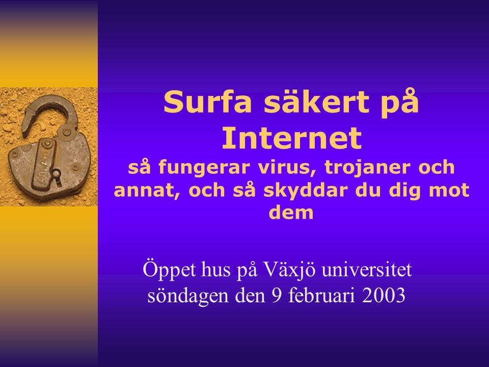 Presentation F Kaj Stenkilsson –Universitetsadjunkt i Informatik F Ola Flygt –Universitetsadjunkt i Datalogi
