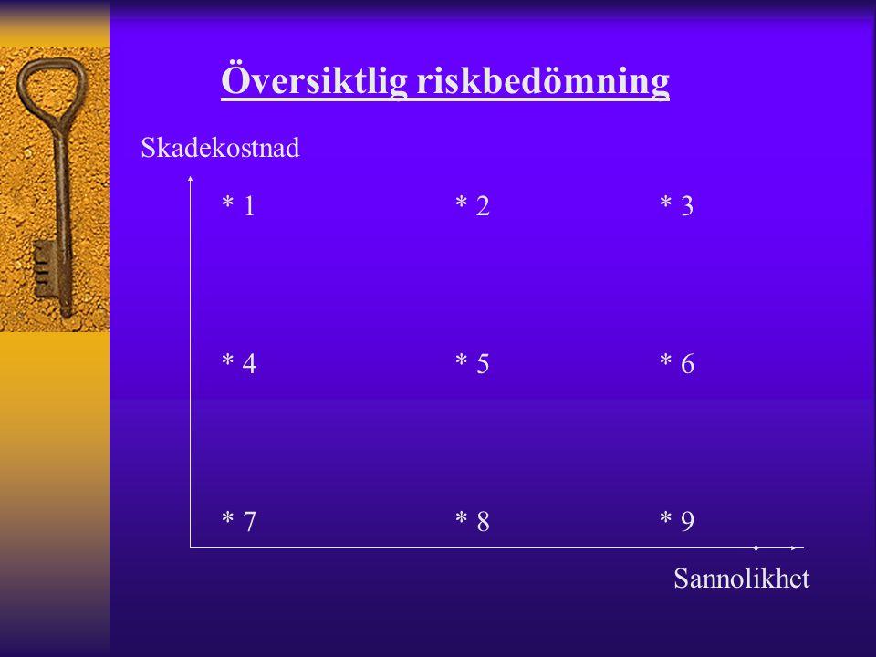 Översiktlig riskbedömning Skadekostnad Sannolikhet * 1 * 2 * 3 * 4 * 5 * 6 * 7 * 8 * 9