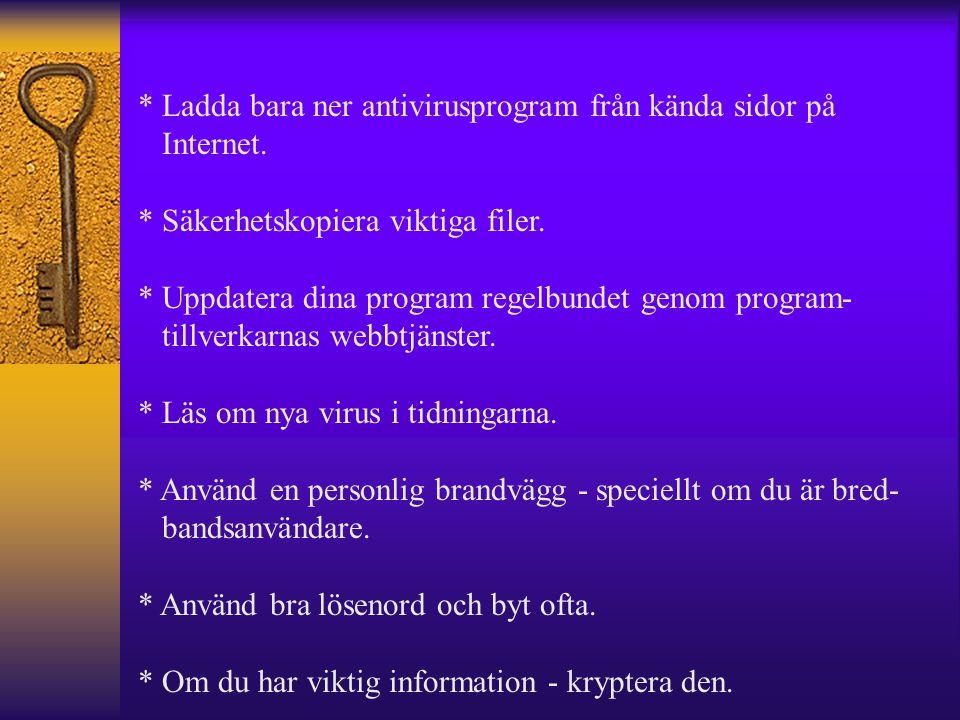 * Ladda bara ner antivirusprogram från kända sidor på Internet. * Säkerhetskopiera viktiga filer. * Uppdatera dina program regelbundet genom program-