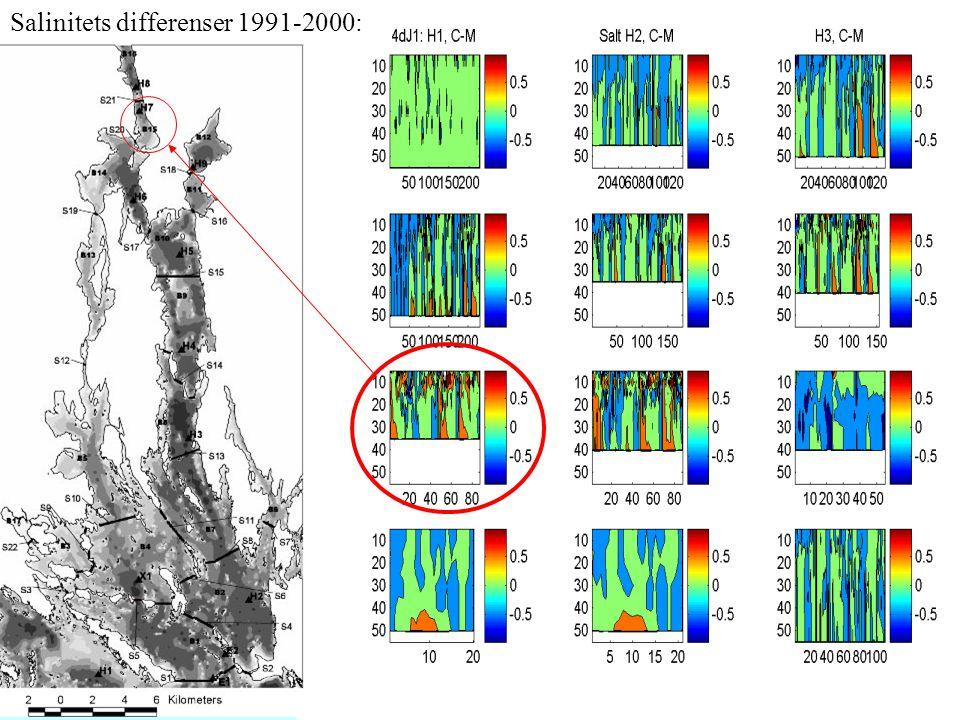 Salinitets differenser 1991-2000: