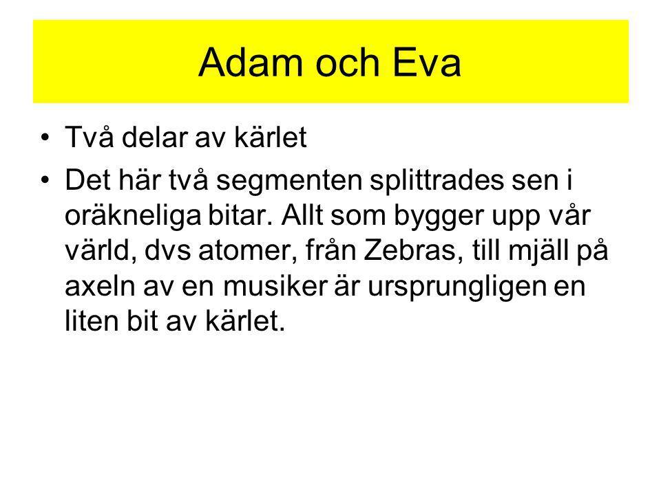 Adam och Eva Två delar av kärlet Det här två segmenten splittrades sen i oräkneliga bitar. Allt som bygger upp vår värld, dvs atomer, från Zebras, til