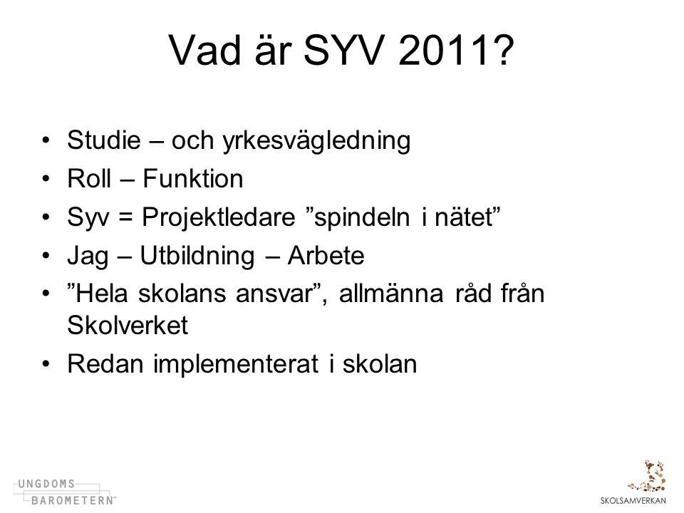 Vad är SYV 2011.