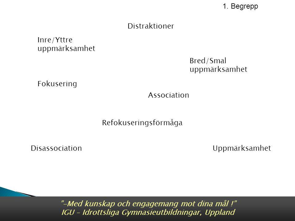 Inre Bred Yttre Smal Nideffer & Sagel 2001 1.