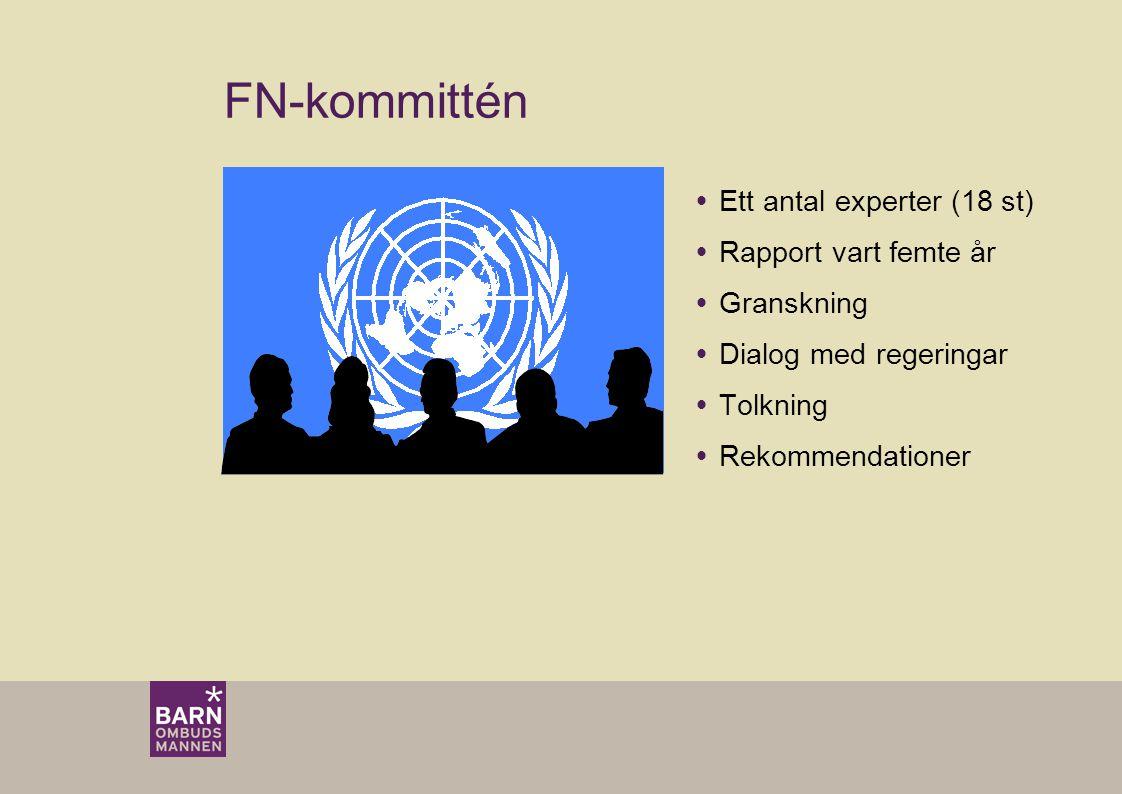 FN-kommittén  Ett antal experter (18 st)  Rapport vart femte år  Granskning  Dialog med regeringar  Tolkning  Rekommendationer