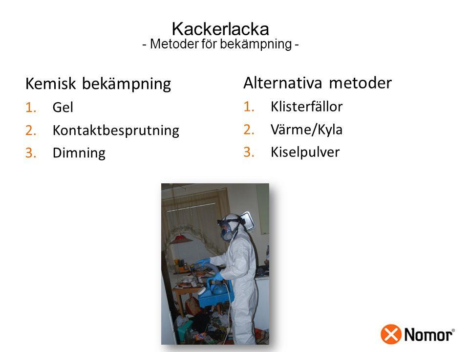 Kackerlacka - Metoder för bekämpning - Kemisk bekämpning 1.Gel 2.Kontaktbesprutning 3.Dimning Alternativa metoder 1.Klisterfällor 2.Värme/Kyla 3.Kiselpulver