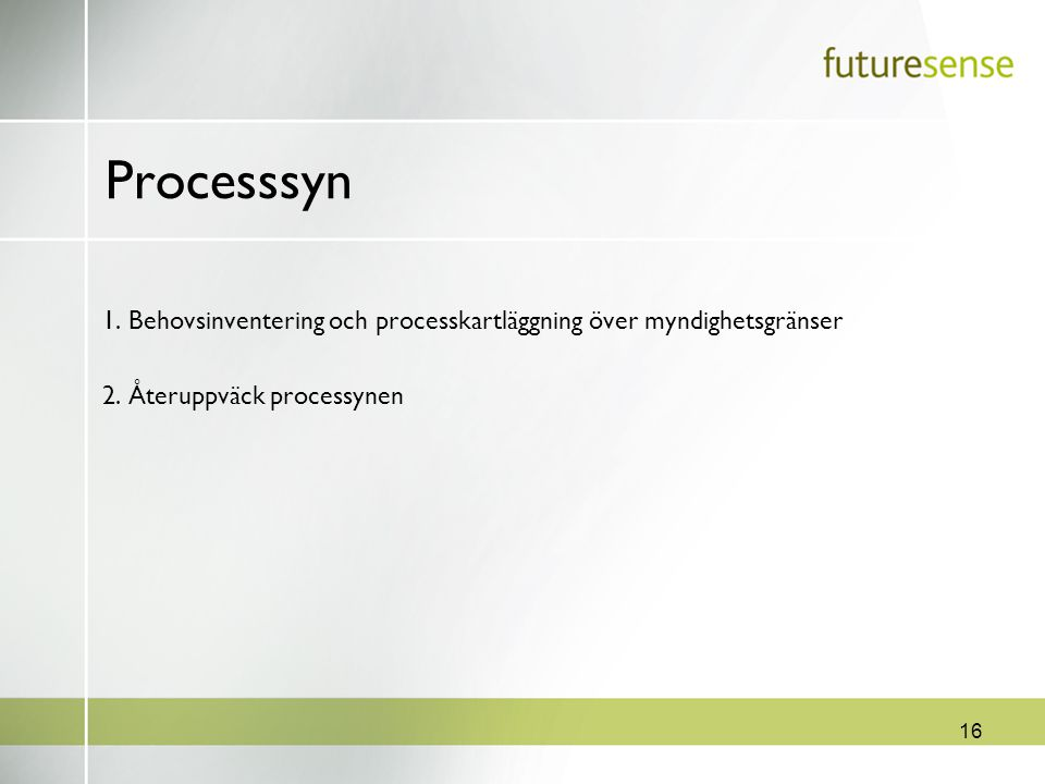 16 Processsyn 1. Behovsinventering och processkartläggning över myndighetsgränser 2. Återuppväck processynen