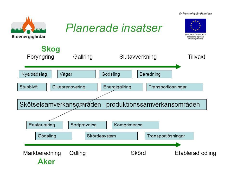 Planerade insatser Skog Åker Föryngring Gallring Slutavverkning Tillväxt MarkberedningOdling Skörd Etablerad odling Dikesrenovering Gödsling Energigal