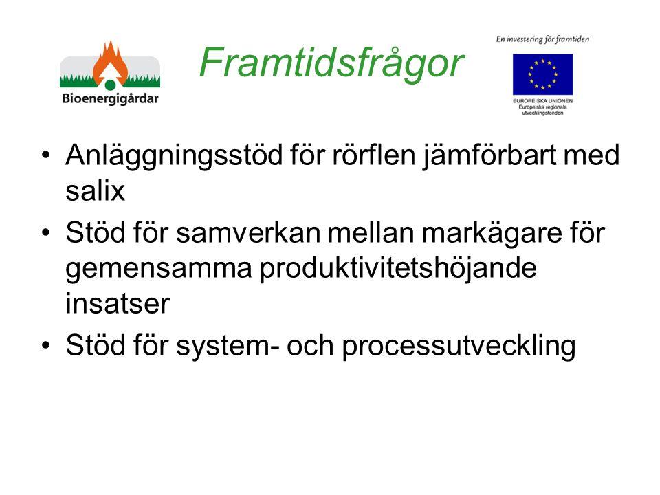 Framtidsfrågor Anläggningsstöd för rörflen jämförbart med salix Stöd för samverkan mellan markägare för gemensamma produktivitetshöjande insatser Stöd för system- och processutveckling