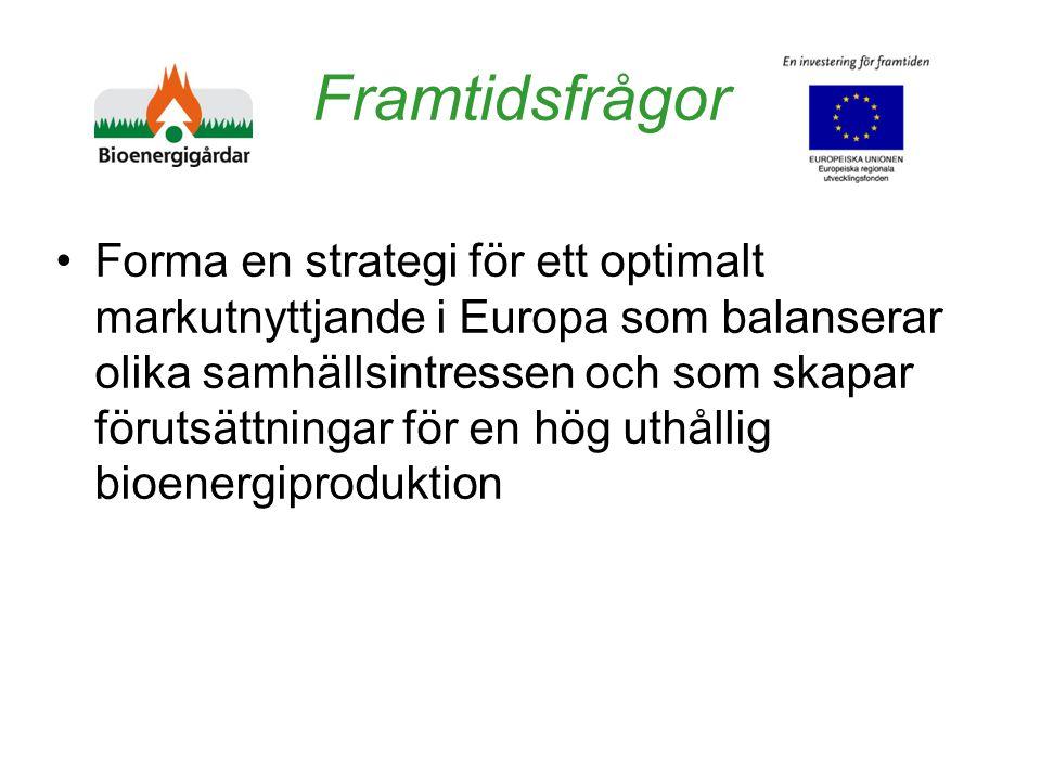 Framtidsfrågor Forma en strategi för ett optimalt markutnyttjande i Europa som balanserar olika samhällsintressen och som skapar förutsättningar för en hög uthållig bioenergiproduktion