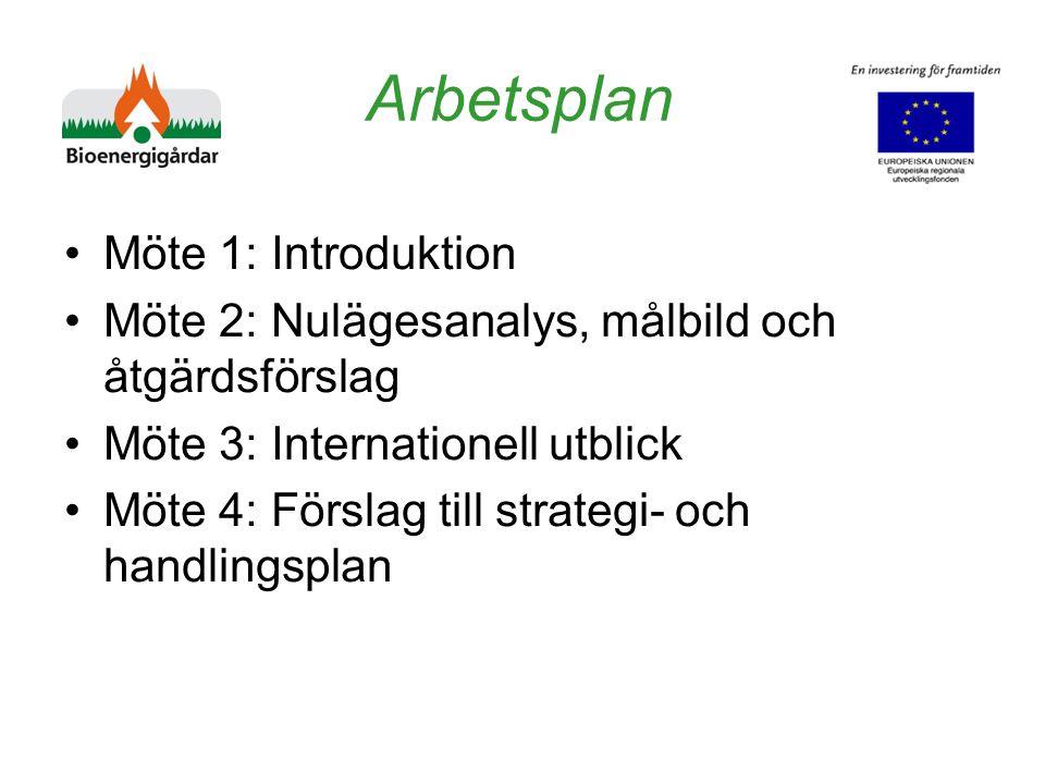 Arbetsplan Möte 1: Introduktion Möte 2: Nulägesanalys, målbild och åtgärdsförslag Möte 3: Internationell utblick Möte 4: Förslag till strategi- och handlingsplan