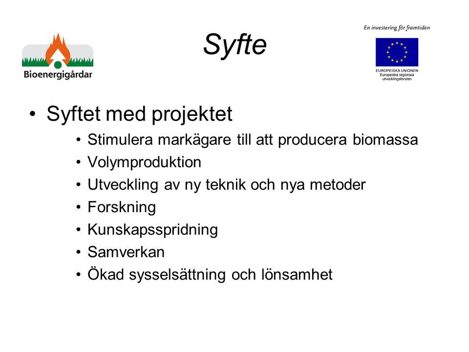 Syfte Syftet med projektet Stimulera markägare till att producera biomassa Volymproduktion Utveckling av ny teknik och nya metoder Forskning Kunskapsspridning Samverkan Ökad sysselsättning och lönsamhet