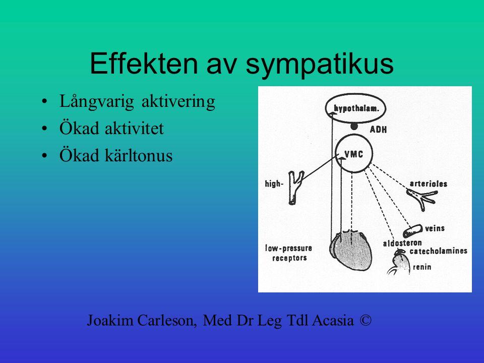 Effekten av sympatikus Långvarig aktivering Ökad aktivitet Ökad kärltonus Joakim Carleson, Med Dr Leg Tdl Acasia ©