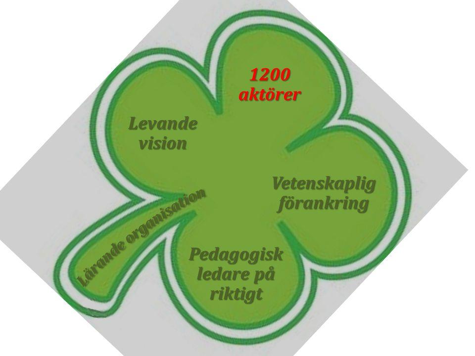 Levandevision 1200aktörer Vetenskapligförankring Pedagogisk ledare på riktigt