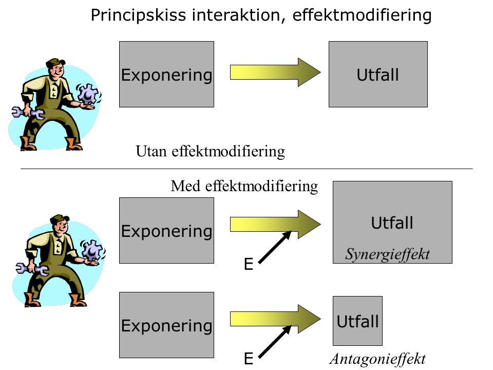 ExponeringUtfall Principskiss interaktion, effektmodifiering Utan effektmodifiering Med effektmodifiering Exponering Utfall E Exponering E Utfall Syne