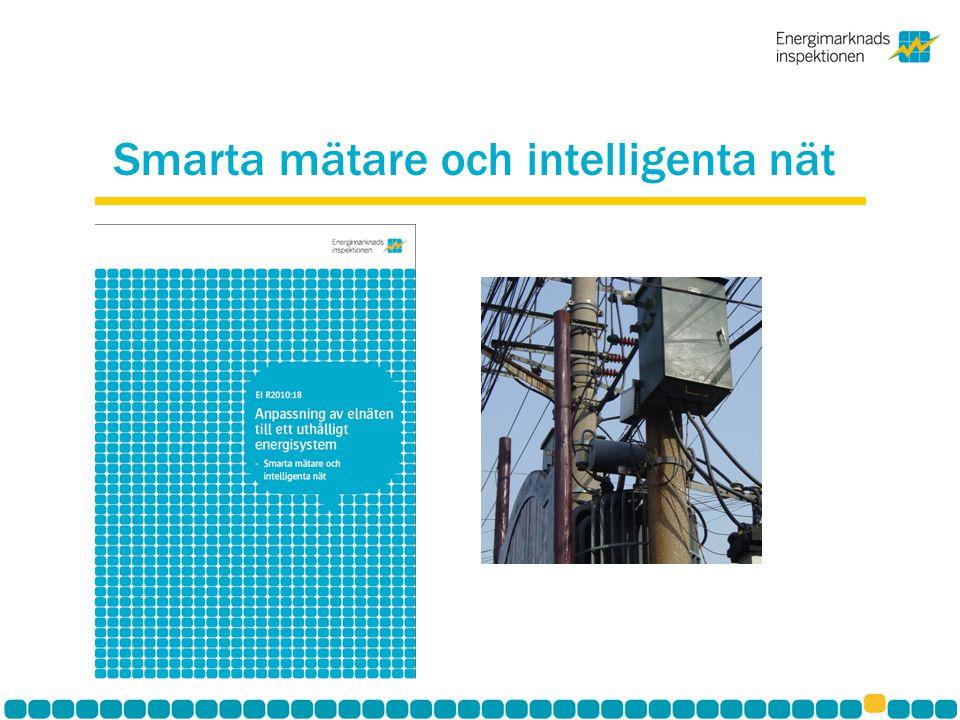 Smarta mätare och intelligenta nät