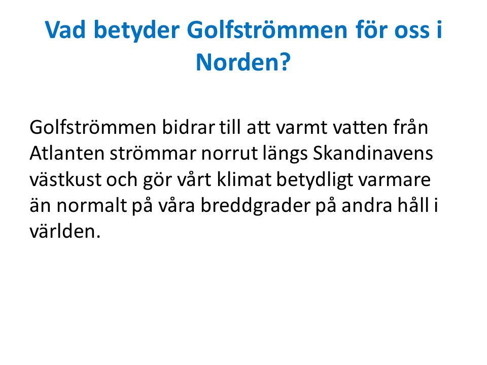 Vad betyder Golfströmmen för oss i Norden? Golfströmmen bidrar till att varmt vatten från Atlanten strömmar norrut längs Skandinavens västkust och gör