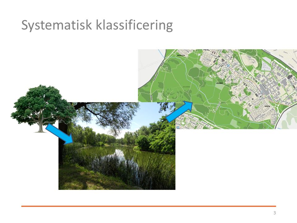 Förvaltning Lokala brukargrupper – Kunskap och engagemang – Nyttjanderätter spelar roll Privat och offentlig – Staden allas ansvar.