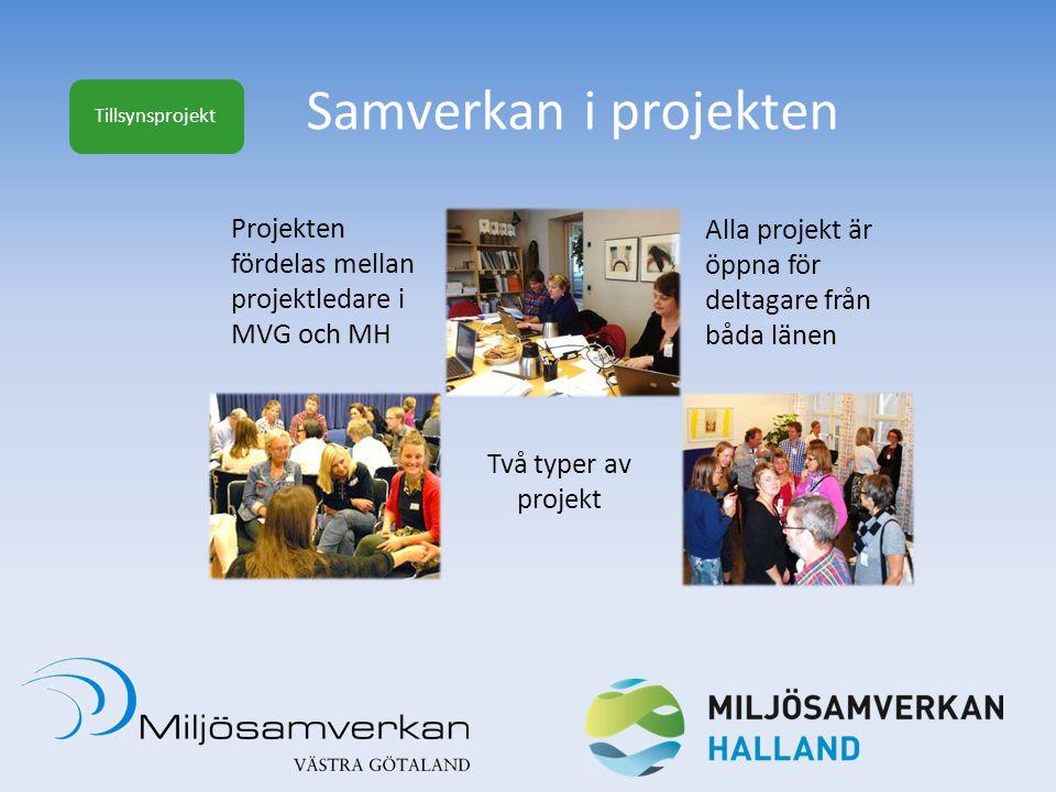 Samverkan i projekten Projekten fördelas mellan projektledare i MVG och MH Alla projekt är öppna för deltagare från båda länen Två typer av projekt Ti
